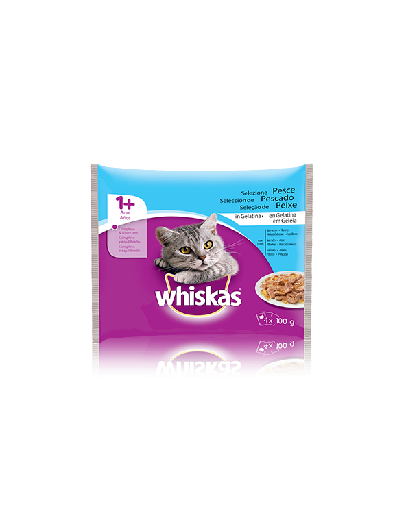 Whiskas Adult 1+ Selezione Pesce in Gelatina