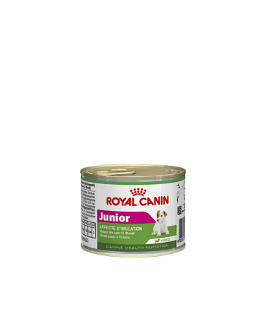 Royal Canin Canine Health Nutrition Mini Junior Lattina in Patè 195 g