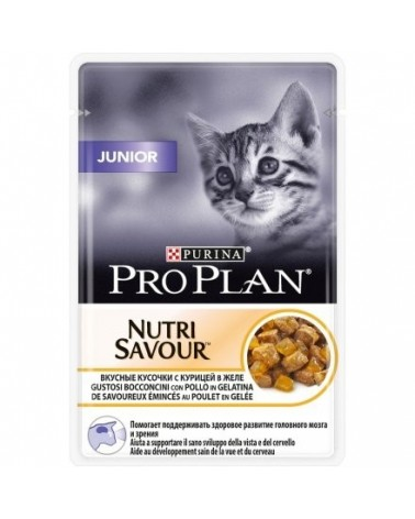 Pro Plan Cat Kitten e Junior Nutrisavour con Pollo Bustine in Salsa 85 g
