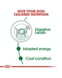 Royal Canin Dog Adult Mini Bocconcini in Salsa Busta 85 g
