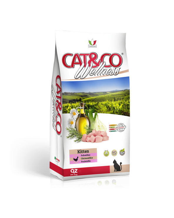 Cat & Co Wellness Kitten con Pollo e Riso 400 g