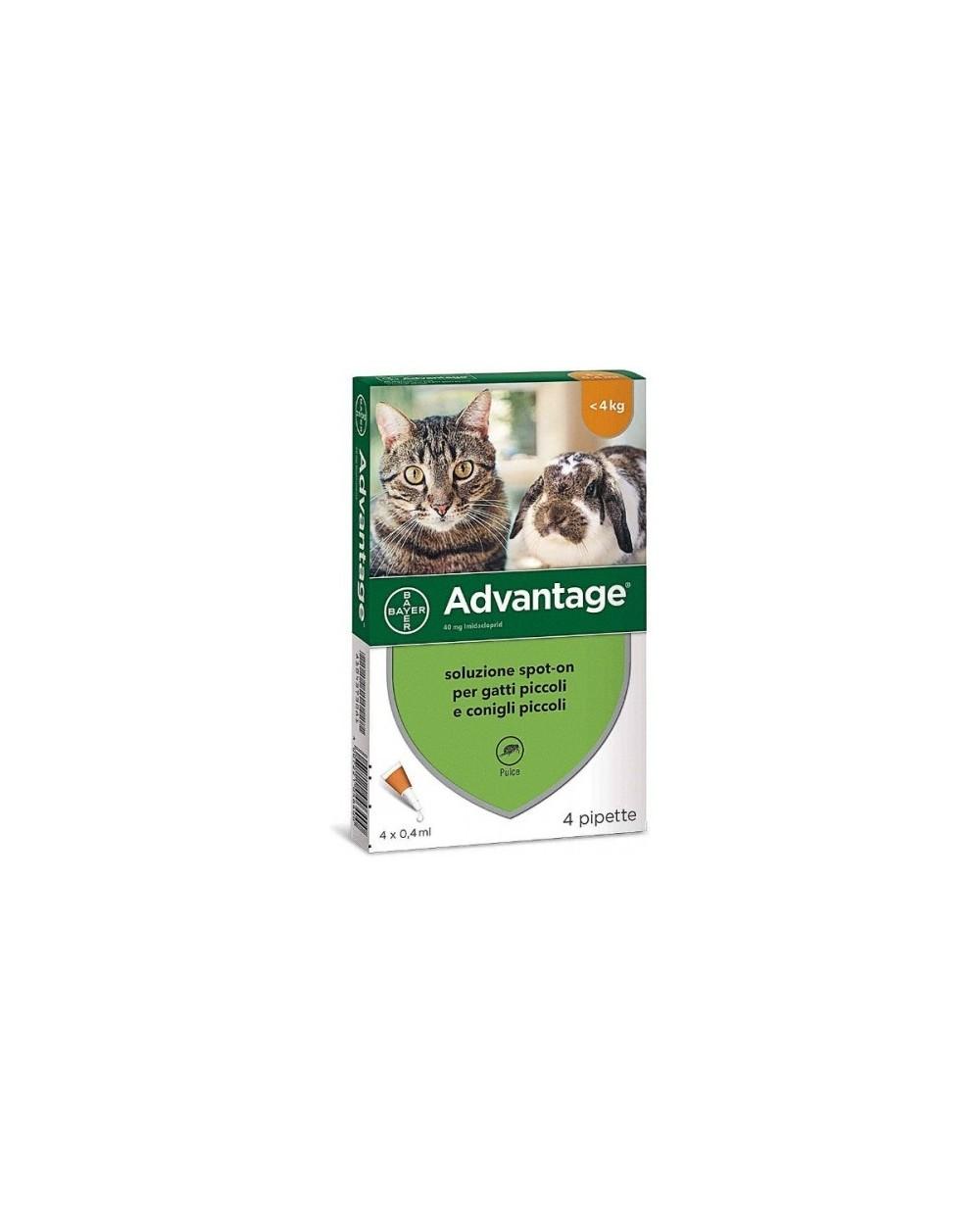 Bayer Advantage 40mg Fialette per Gatti Sotto i 4Kg e Conigli