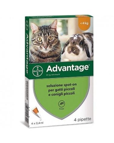 Advantage Antipulci per Gatti e Conigli Fino 4 kg 4 Fiale